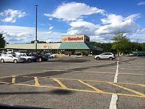 Grand Union (supermarket) - One of five former Grand Union stores that became a Hannaford Supermarket