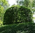 Klanggarten - panoramio (1).jpg