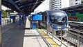 Korail-Donghae-line-K124-Ilgwang-station-plaform-20180331-104556.jpg