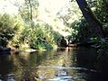 Korytnica River (4).jpg