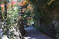 Koshoji Uji Kyoto02n4592.jpg