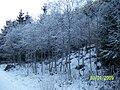 Krasa okolo obce osrblie - panoramio.jpg