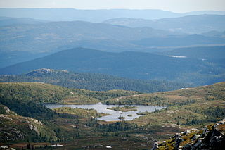 Rollag Municipality in Viken, Norway