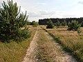 Krzywda-road-120623.jpg