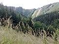 Kunerad - cesta na chatu - panoramio.jpg