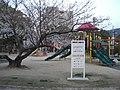 Kuramoto undo Park.jpg
