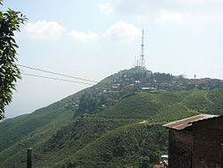 Kurseong from the train