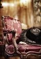 Länstol klädd i rött siden - Hallwylska museet - 91454.tif