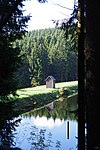 LSG GS 00059 Harz (LK Goslar) - Neuer Grumbacher Teich (8).jpg