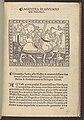 La Giostra di Giuliano de Medici... MET DP108949.jpg