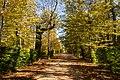 La Granja - Jardines de La Granja de San Ildefonso - Otoño 01 2017-10-24.jpg