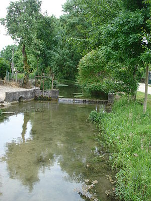 Avirey-Lingey - The Sarce.