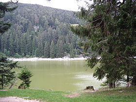 Image illustrative de l'article Lac Vert (Vosges)