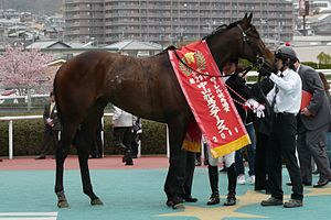 中山牝馬ステークス's relation image