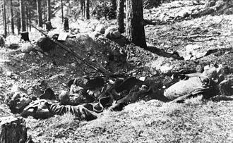 Battle of Lahti - Fallen Reds in the Salpausselkä ridge
