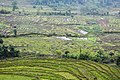 Landscape of Sikkim 01.jpg