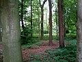 Landschaftsschutzgebiet Warmenau-Ufer LSG OS 00019 Datei 21.jpg
