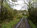 Lane leading to the Mill, on Ings Beck - geograph.org.uk - 1580016.jpg
