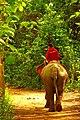 Laos - panoramio.jpg
