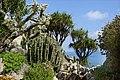 Le jardin exotique de Monaco (33746315038).jpg