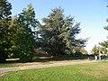 Le parc du centre de geriatrie a chantepie - panoramio (1).jpg