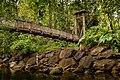 Le pont de la maison de la forêt.jpg