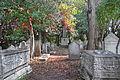 Le vieux cimetière hébraïque (Lido de Venise) (8204372712).jpg