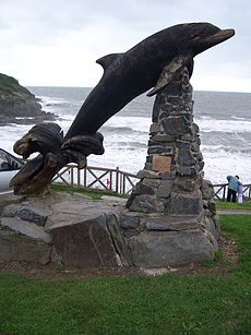 LeapingDolphinAberporth.jpg