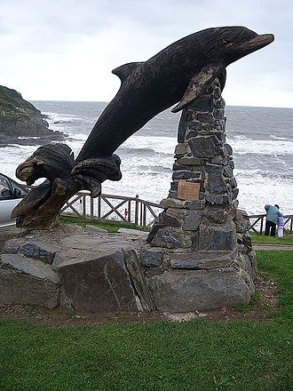 Aberporth - Image: Leaping Dolphin Aberporth