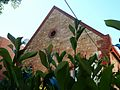 Leaves and Stones (32081136973).jpg