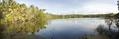 Lib island pond.png