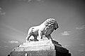 Lion, Place de la Concorde.jpg