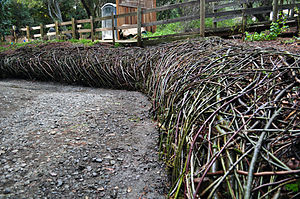 "Adobe Creek (Santa Clara County, California) - ""Thicket"" is a watershed sculpture woven and shaped of willow and elderberry by Daniel McCormick and Mary O'Brien. This living art stabilizes a creek bank in Redwood Grove and slows flows unlike concrete or gabion retaining walls."