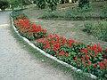 Lodhi Garden - Landscape 1.jpg