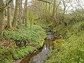 Longton Brook - geograph.org.uk - 158051.jpg