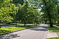 Looking W on Fairmount Blvd at Demington - Euclid Golf Allotment - Cleveland Heights Ohio.jpg