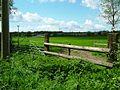 Looking towards Ridgelane - geograph.org.uk - 8016.jpg