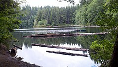 Lost Lake in the Clatsop State Forest (Astoria District).jpg