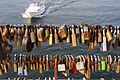 Love locks at Bryggebroen (19261829609).jpg