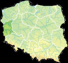 Województwo lubuskie na mapie Polski