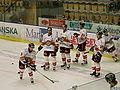 Luleå Hockey Kinnarps.jpg