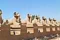 Luxor Karnak-Tempel 2016-03-21 Widder-Sphinx-Allee 03.jpg