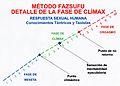 Método Fazsufu – Respuesta sexual humana y detalle de la fase de clímax.jpg
