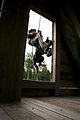 MARSOC Multi-Purpose Canine Handlers Train for the Unforeseen 141002-M-EJ335-045.jpg