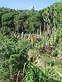 MARiMUTRA 001 - Accés - panoramio.jpg