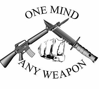 Marine Corps Martial Arts Program - Image: MCMAP1insignia