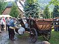 MDDK 2012 Łosie, Zagroda Maziarska - 26-27 maja 2012 (7300761052).jpg