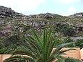 Madeira - Machico (2093643630).jpg