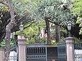 Madeira em Abril de 2011 IMG 1822 (5663685105).jpg