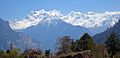 Manaslu view from Timang.jpg